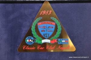 assemblea soci 2013 (13)